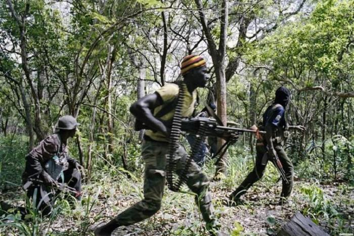 Baghagha-Ziguinchor: Des jeunes blessés par des éléments armés non identifiés