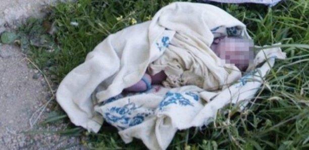 Oussouye : Un nouveau-né retrouvé en vie après 11 jours passés dans la brousse