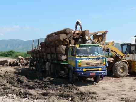Coupe de bois en Casamance: Le gouverneur de Ziguinchor charge les chefs de village