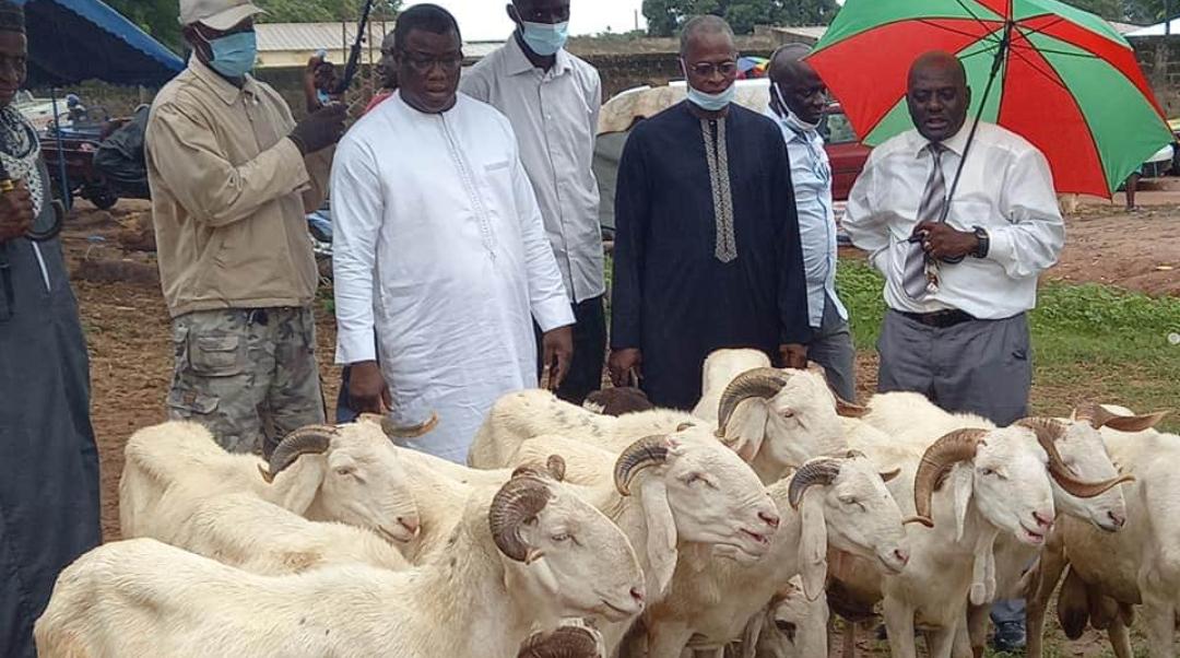 Tabaski 2020: Baldé distribue des moutons à Ziguinchor