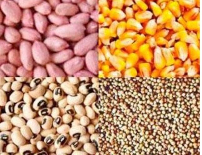 Distribution d'intrants et de matériels agricoles à Bignona, le fogny dénonce une discrimination