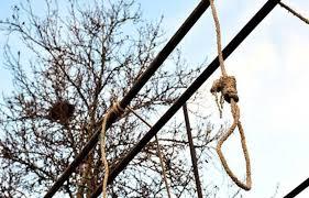 Ziguinchor : Un enseignant retrouvé mort pendu sur un arbre