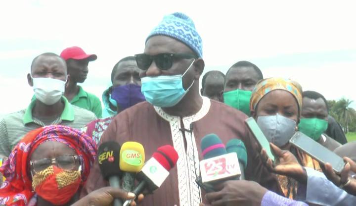Casamance: Les paysans plaident pour une deuxième phase du PPDC