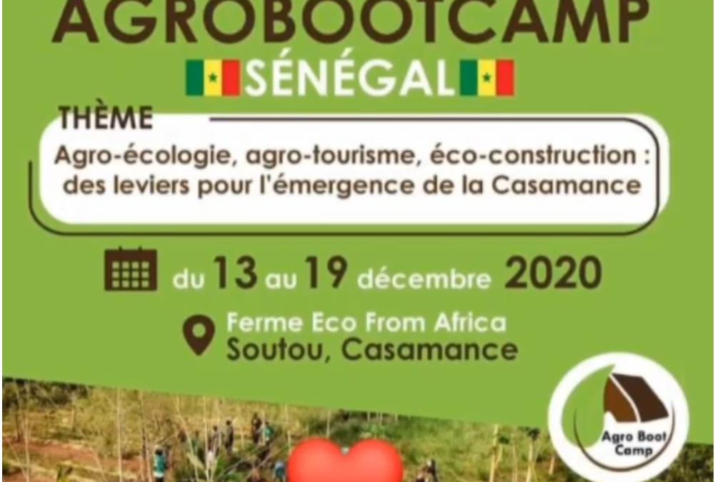 Soutou: Premier village sénégalais à accueillir l'AgroBootCamp