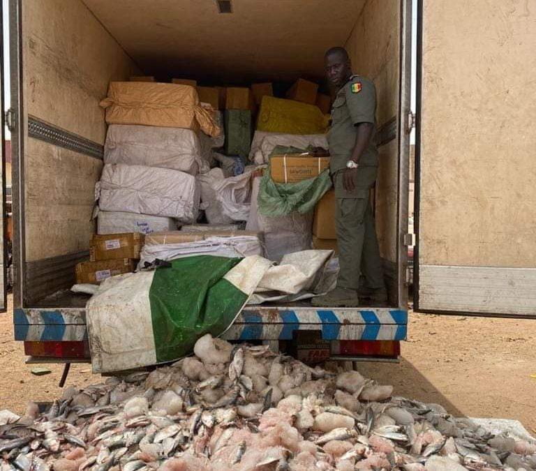 Keur Ayib: La douane saisi des médicaments cachés sous des caisses de poissons congelés en Provence de Banjul
