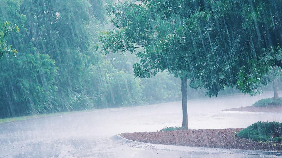 Hivernage au Sénégal: La région de Kédougou reçoit ses premières gouttes de pluie